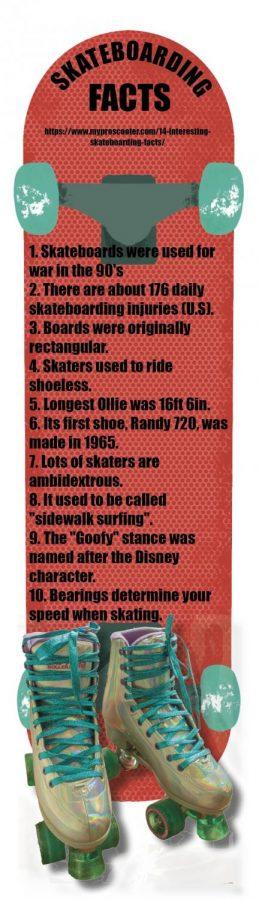 Skateboarding facts